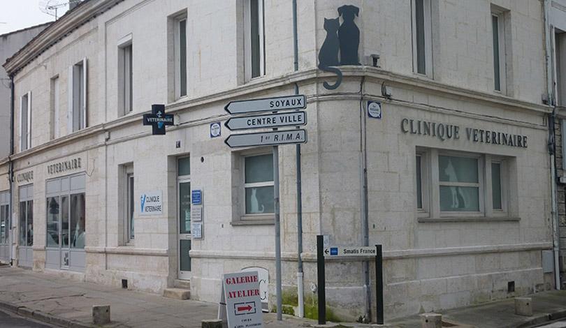 Rénovation d'une clinique vétérinaire - Angoulême - Après